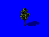 tree01_render01.png